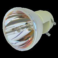 OPTOMA DW318e Lampa bez modula