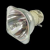OPTOMA EH319UST Lampa bez modula