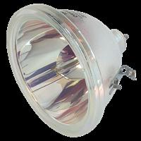TOSHIBA TY-G1 Lampa bez modula